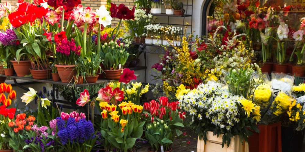 Florists in Rawalpindi